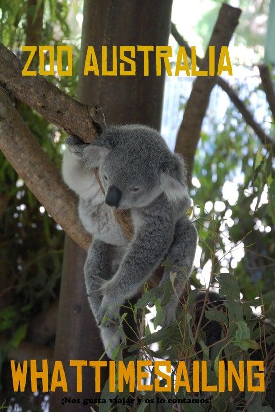 Zoo Australia